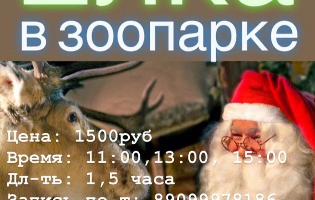 22.12 Новогоднее представление «В гостях у Санты»