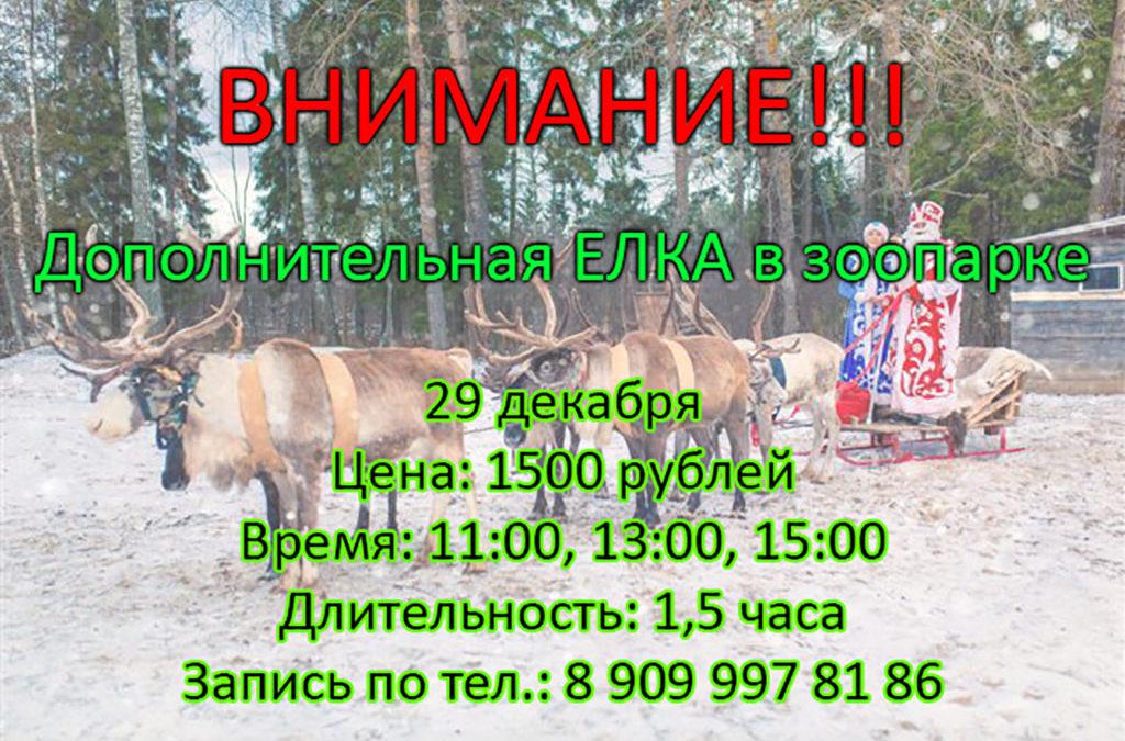 29.12 Дополнительная ЕЛКА в зоопарке